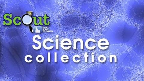 Scout-Science