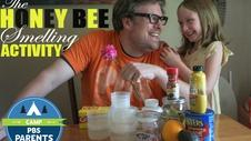 PBS Parents: The Honeybee Smelling Activity