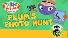 Plum's Photo Hunt