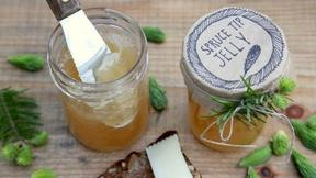 Make Your Own Spruce Tip Jelly