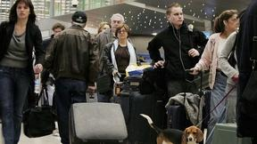 7 Ways to Take the Stress Out of Holiday Travel