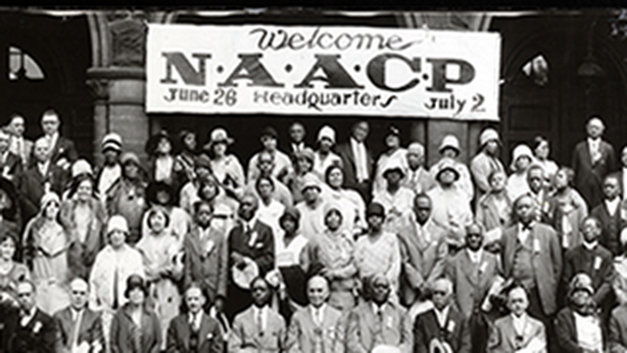 The Naacp A Century In The Fight For Freedom Social