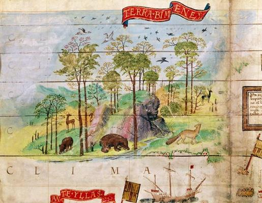 The Canadian Forest, detail from a map of the Atlantic, 1519