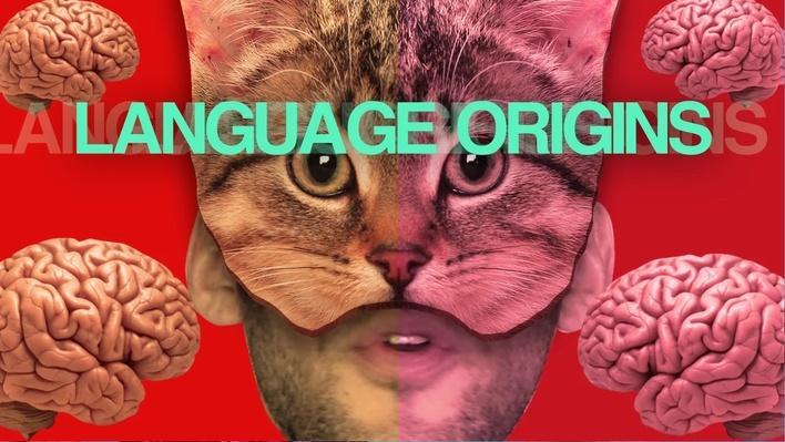 Language Origins | Bongo Bongo