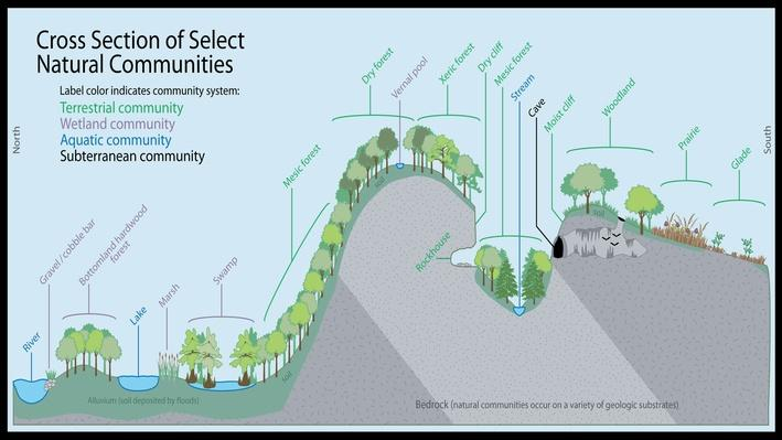 Select Natural Communities
