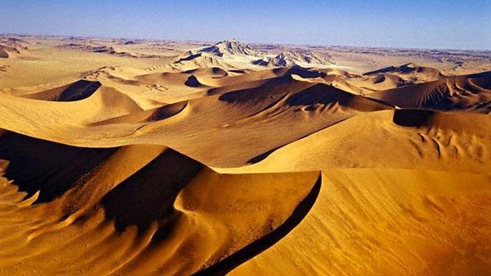 life desert essay Essay in desert the life i still pull out this essay on those days the mountain feels impossibly steep starting my third paragraph in my essay about to many more to.