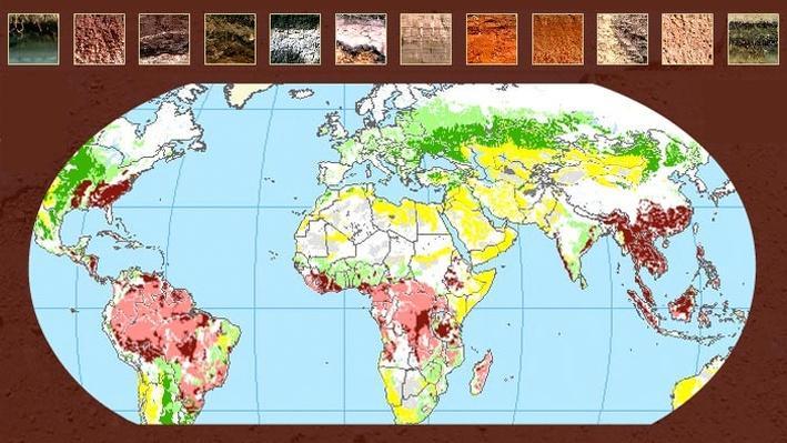 soils around the world