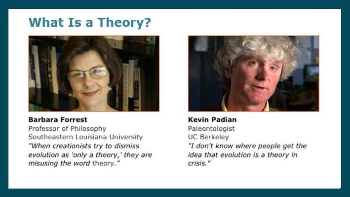 What Is a Theory?