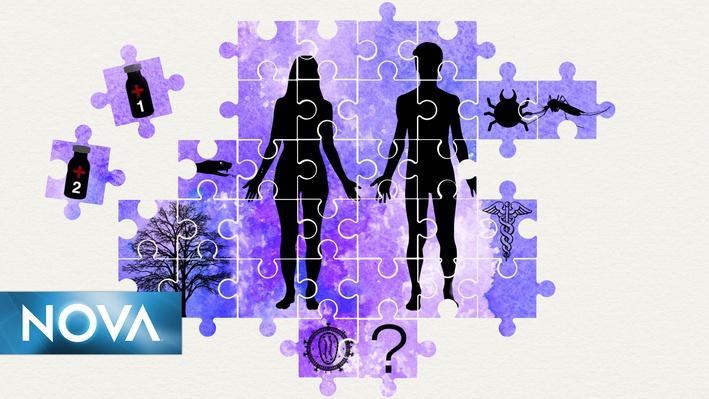 Evolution Lab | Interactive Lesson | Mission 2 | Science ...