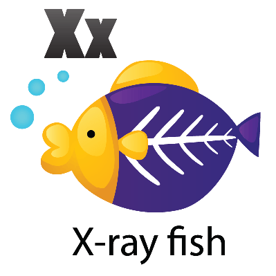 Animal alphabet x for x ray fish clipart the arts for X ray fish