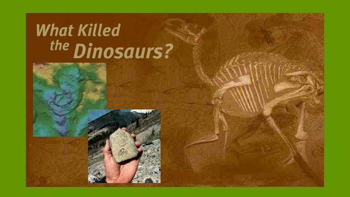 essay on what killed the dinosaurs Read this science essay and over 88,000 other research documents extinction of dinosaurs extinction of dinosaurs two-hundred and thirty million years ago the first dinosaur-like creature roamed the earth dinosaurs were a very.