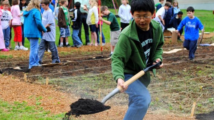 Think Garden: A Gardener's Poem