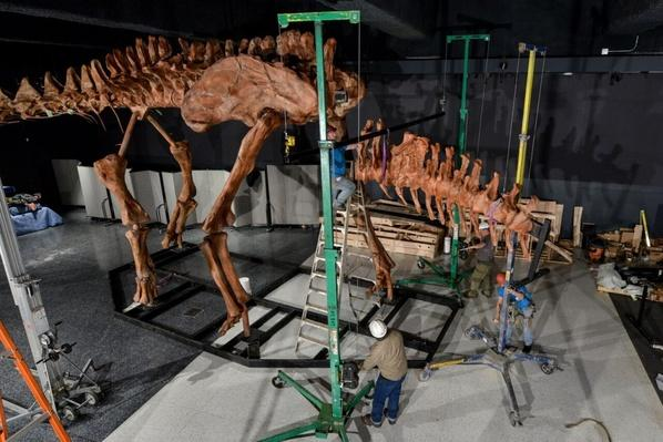 Scientists Use 3-D Printers to Recreate Largest Dinosaur Ever | PBS NewsHour