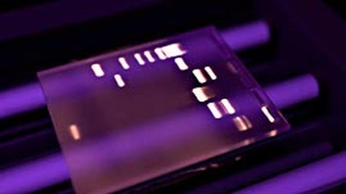 Electrophoresis And Gel Analysis