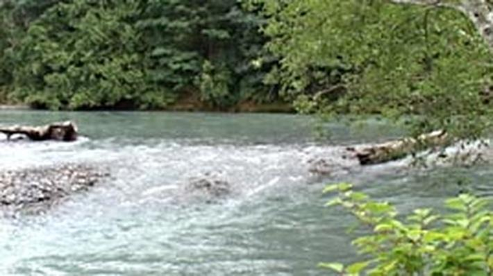 Warmer Water Kills Salmon Eggs