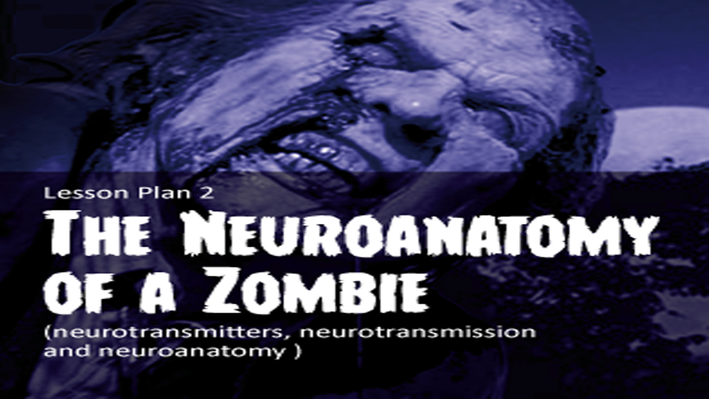 Lesson 2: The Neuroanatomy of a Zombie