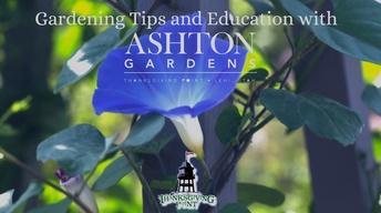 Ashton Gardens Education