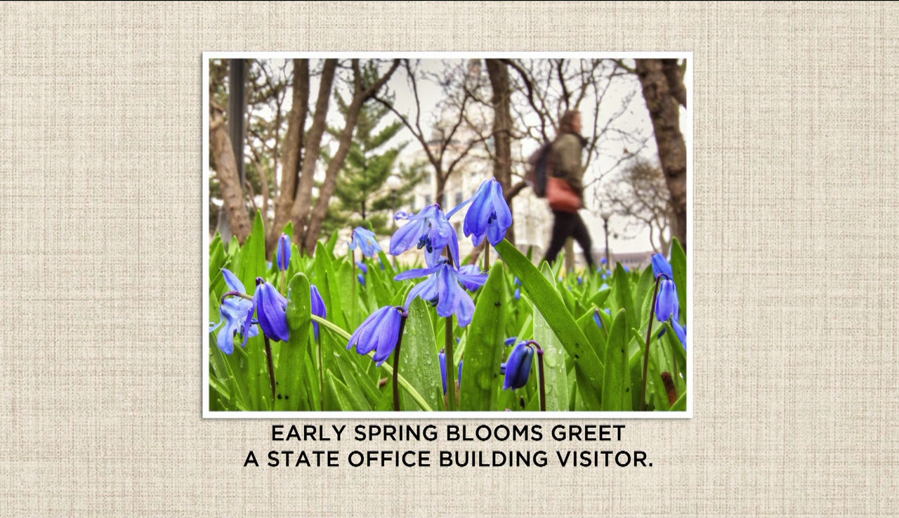Capitol Pics: Spring is in the air