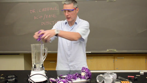 Acid and Bases pH Experiment (w/ Red Cabbage Indicator)