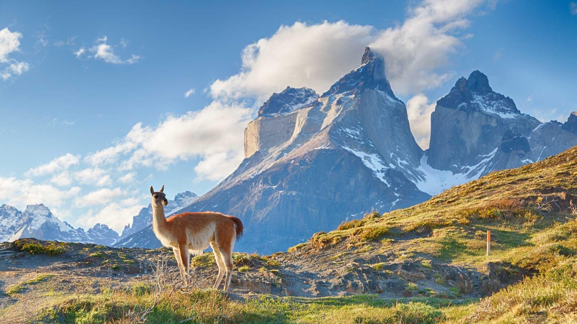 Episode 3 | Andes | Full Program