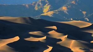 Settling the Sand Dunes