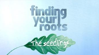 S4: Finding Your Roots: The Seedlings Trailer
