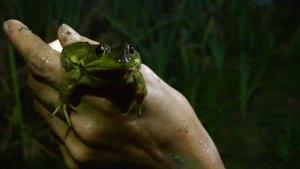 Frog Gigging and Fishing Memories