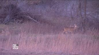 Deer hunters help combat food insecurity in Iowa
