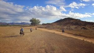 Wine Valley Ride and Moroxican Food