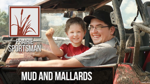 Mud and Mallards