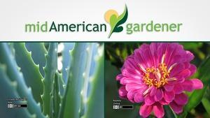 Mid-American Gardener with Sandy Mason January 4, 2018