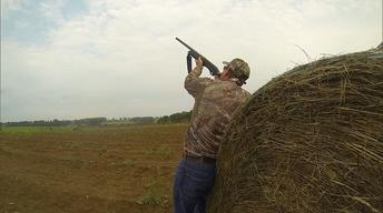 Dove Hunting for a Common Cause