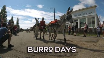 Fairplay, Colorado hosts its 69th Annual Burro Days