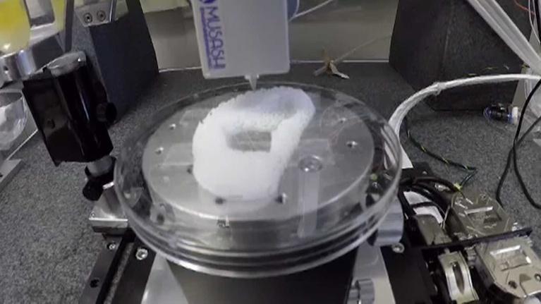 UNC-TV Science: NC Science Now: 3-D Organs
