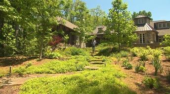 Volunteer Gardener 2551