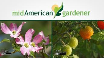 Mid-American Gardener with Sandy Mason June 1, 2017
