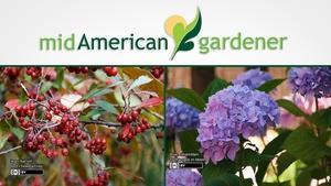 Mid-American Gardener with Sandy Mason December 7, 2017