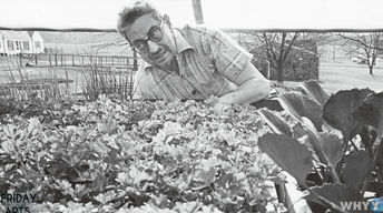 Rodale Institute: The Birthplace of Organic Farming