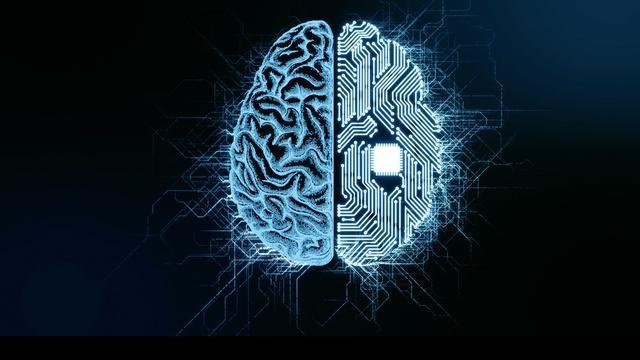 NOVA Wonders Can We Build a Brain?