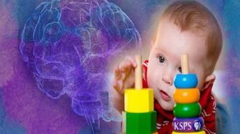 Babies' Brains