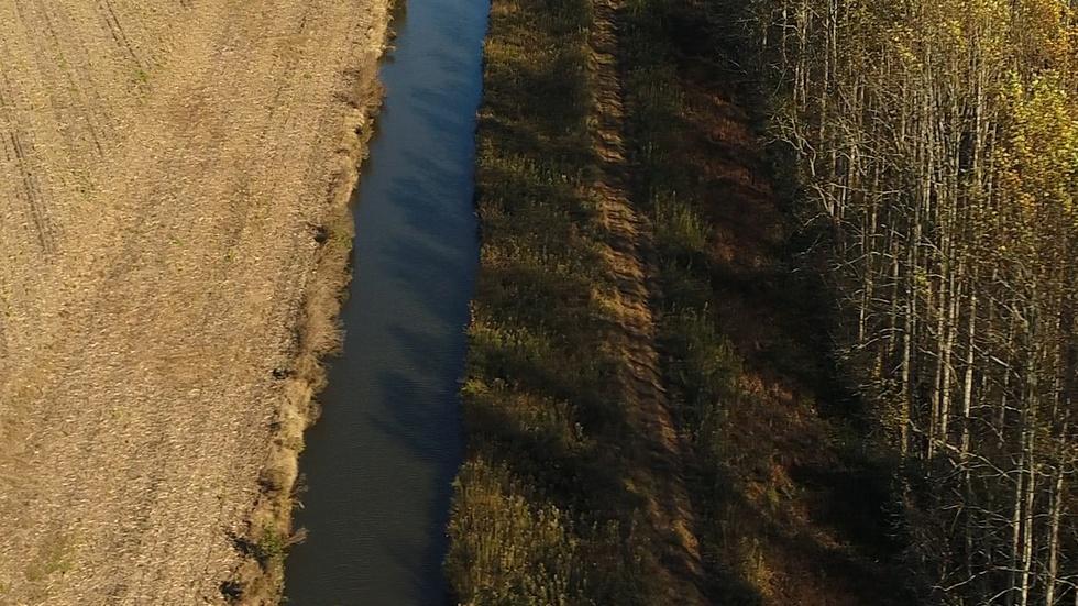 At Water's Edge image