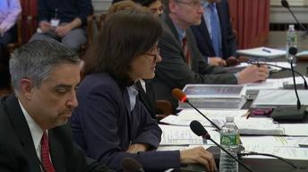 Acting treasurer defends budget before Assembly committee