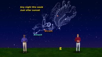 """Andromeda!"" Oct 9-15th 1 Min"