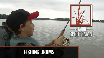 Fishing Drums