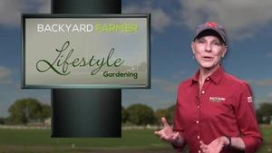Lifestyle Gardening: Starting Seeds at Home