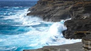 INSIGHTS ON PBS HAWAI'I: Dubious Distinction