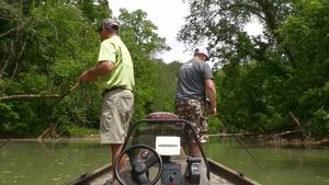 Muskie Fishing and Medicinal Plants