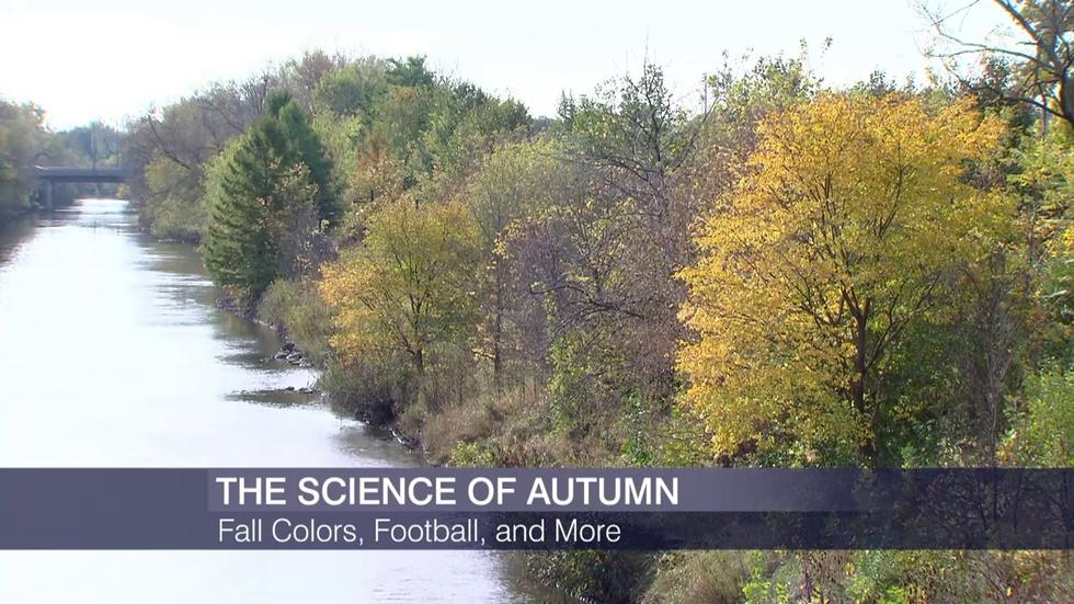 The Science Behind Fall Colors, Football and More image
