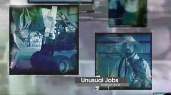 Unusual Jobs