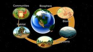 Idaho Ecosystems